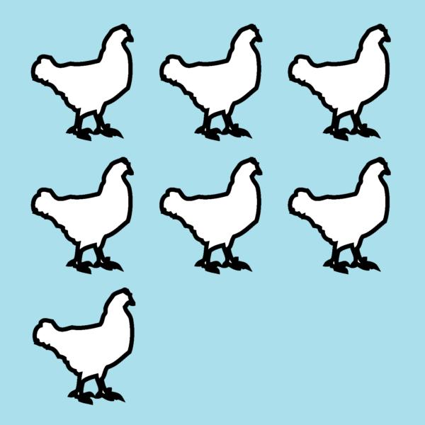 7 Chickens